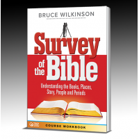 Survey of the Bible Workbook 20 Workbook Bulk